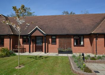 Thumbnail 2 bed terraced bungalow to rent in Burton Park Road, Petworth