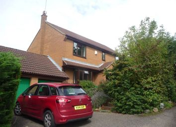 Thumbnail 4 bed property to rent in Aviemore Gardens, West Hunsbury, Northampton