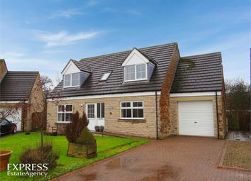 Thumbnail 4 bed detached house for sale in Sefton Court, Gilsland, Brampton, Cumbria