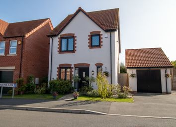 Thumbnail 3 bed detached house for sale in Red Pine Close, Clowne, Chesterfield