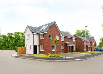 "Thumbnail 3 bed property for sale in ""The Fyvie"" at Inchinnan Road, Paisley"