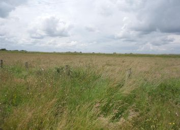 Thumbnail Land for sale in Marsh Road, Fosdyke