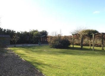 Thumbnail 3 bed bungalow for sale in Little Ellingham, Attleborough, Norfolk