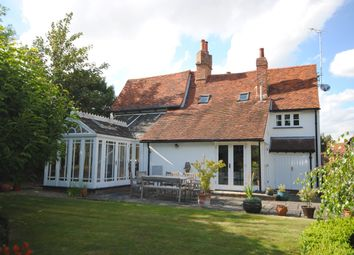 Thumbnail 5 bed equestrian property for sale in Blasford Hill, Little Waltham, Chelmsford