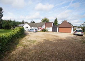 Thumbnail 4 bed detached bungalow for sale in Burgh Hill Road, Bramshott