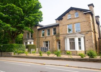 Thumbnail 4 bed flat to rent in Clarke Drive, Sheffield