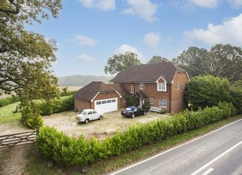 Thumbnail 5 bed detached house for sale in Horsham Road, Steyning, West Sussex, England