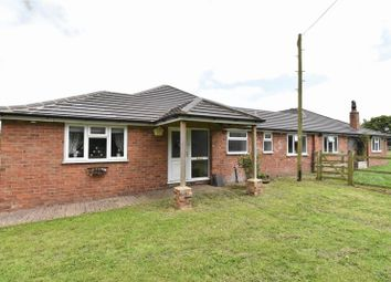 Thumbnail 5 bed equestrian property for sale in Louth Park, Keddington, Louth