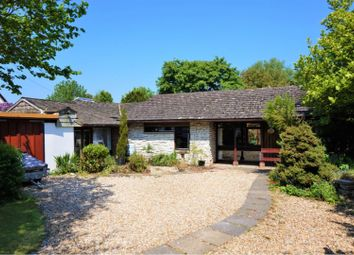 Thumbnail 5 bed detached bungalow for sale in Briantspuddle, Dorchester