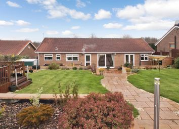 Thumbnail 4 bedroom bungalow for sale in Brancepeth Chare, Peterlee