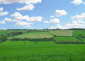 Thumbnail Land to rent in Winterborne Houghton, Blandford Forum