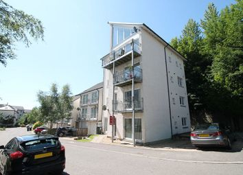 Thumbnail 2 bedroom flat to rent in Riverside Park, Blairgowrie