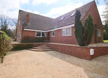 Thumbnail 5 bed bungalow for sale in Cleeton St. Mary, Kidderminster
