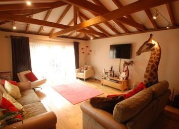 Thumbnail 4 bedroom detached house to rent in Ashgrove Road, Ashford
