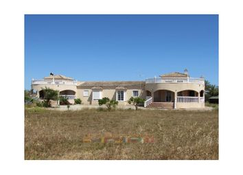 Thumbnail 6 bed finca for sale in Catral, Catral, Catral