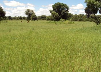 Thumbnail Farm for sale in Wabe, Okavango Delta, Botswana