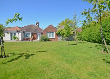 Thumbnail 3 bedroom detached bungalow for sale in Straylands Grove, York