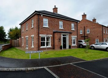 Thumbnail 4 bed detached house for sale in Kings Oak Meadow, Lisburn