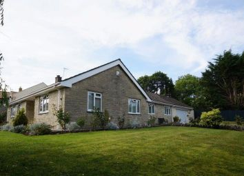 Thumbnail 4 bed detached bungalow for sale in High Street, North Wootton, Shepton Mallet