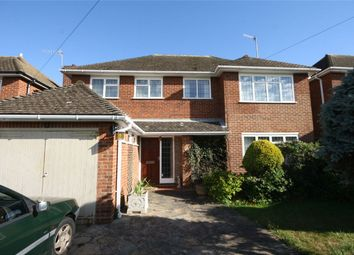 Thumbnail 4 bed detached house for sale in Hawkhurst Way, Bexhill-On-Sea