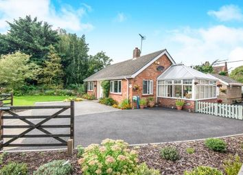 Thumbnail 3 bed bungalow for sale in Ringland, Norwich, Norfolk