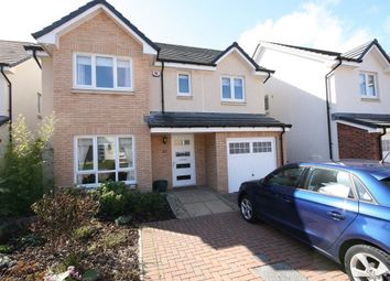 Thumbnail 4 bed detached house to rent in Maplewood Park, Edinburgh
