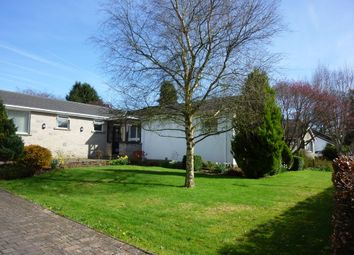 Thumbnail 3 bed detached bungalow to rent in Sedbergh Drive, Kendal