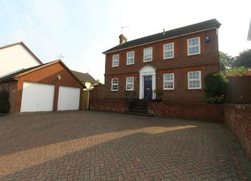 Thumbnail 4 bed detached house to rent in Pardoe Place, East, Ipswich
