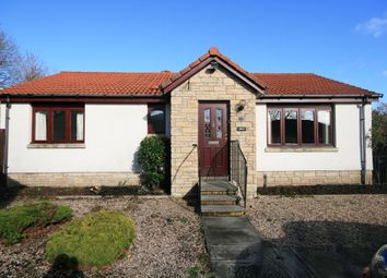 Thumbnail 3 bed bungalow to rent in Sheilinghill Place, Crieff