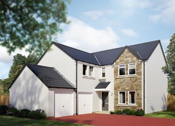 "Thumbnail 5 bed detached house for sale in ""The Trinity"" at Cotland Drive, Falkirk"
