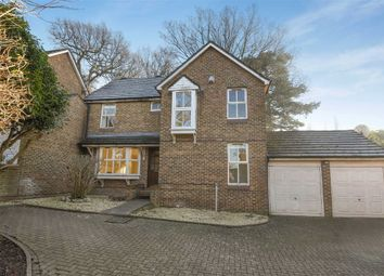Thumbnail 4 bed property to rent in Windmill Rise, Kingston Upon Thames