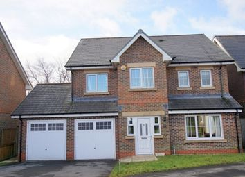 Thumbnail 5 bed detached house for sale in 19, Heol Derwen, Cross Hands, Llanelli, Carmarthenshire