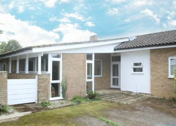 Thumbnail 4 bed bungalow to rent in Woodbridge Road, Debach, Woodbridge