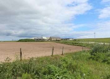 Thumbnail 3 bed detached house for sale in South Ronaldsay, Orkney