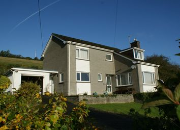 Thumbnail 4 bed detached house for sale in Sunnyhill, Llandysul