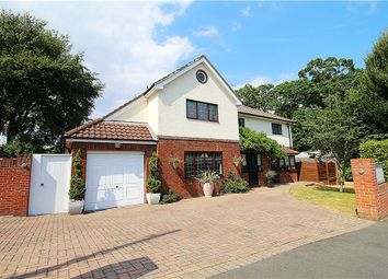 Thumbnail 5 bed property for sale in Queens Park, Bournemouth, Dorset
