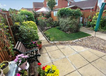 Thumbnail 3 bedroom detached house for sale in Curlew Grove, Stanground, Peterborough
