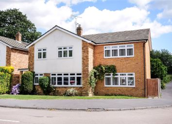 Thumbnail 4 bedroom detached house to rent in Owen Road, Windlesham, Surrey