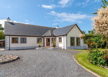 Thumbnail 3 bed detached bungalow for sale in Kirkmaiden, Drummore