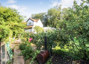 Thumbnail 4 bed semi-detached house for sale in Kenninghall Road, Banham, Norwich