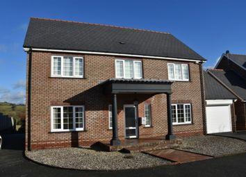 Thumbnail 4 bed detached house for sale in Parc Yr Ynn, Llandysul