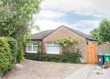 Thumbnail 1 bed detached bungalow for sale in Brandy Wells, Cairneyhill, Dunfermline
