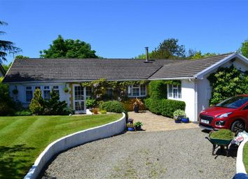 Thumbnail 5 bed detached bungalow for sale in Pencae, Llanarth, Ceredigion