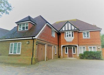 Thumbnail 5 bed detached house to rent in The Drive, Hellingly, Hailsham, East Sussex