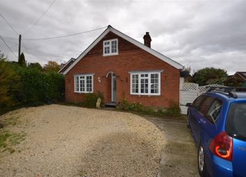 Thumbnail 4 bed detached bungalow to rent in Middlefield, Halstead