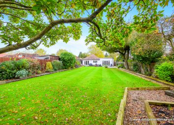 Thumbnail 4 bed detached bungalow for sale in Green Lane, Chertsey