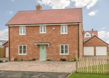 Thumbnail 4 bed detached house for sale in Maple Gardens, Stotfold