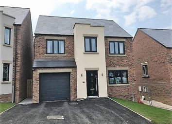 Thumbnail 4 bed detached house for sale in Plot 10, Petersfield, Elvin Way, Tupton, Chesterfield