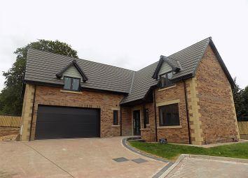 Thumbnail 5 bed detached house for sale in The Eamont, Plot 4, William's Pasture, Aglionby