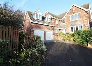 Thumbnail 5 bedroom detached house for sale in Parklands View, Aston, Sheffield